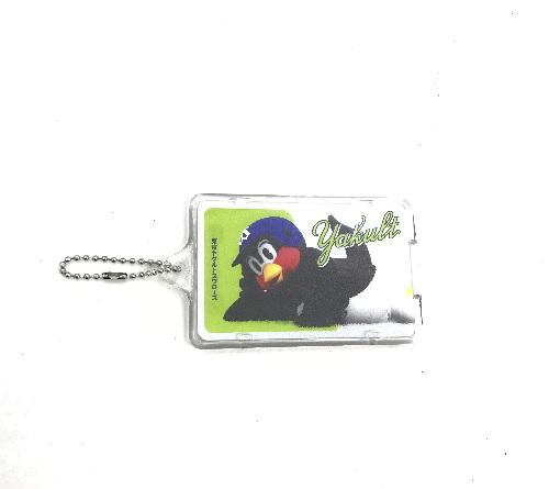 SwallowsPIICA(つば九郎)